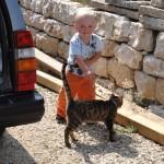 toni the cat...